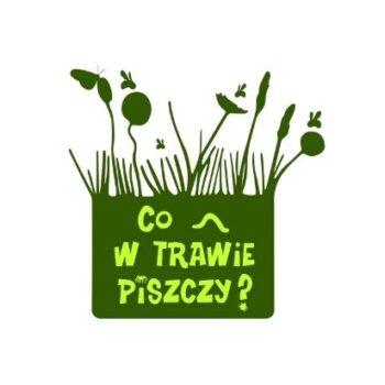 Co w trawie piszczy?