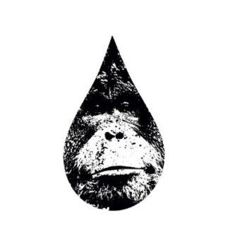 Ocalmy orangutany! #OLEJOLEJ