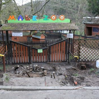 Modernizacja Małego Zoo